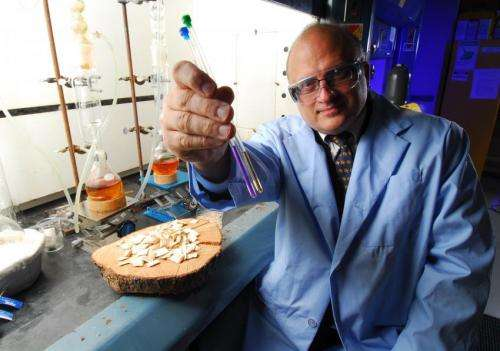 Making money from lignin: Roadmap shows how to improve lignocellulosic biofuel biorefining
