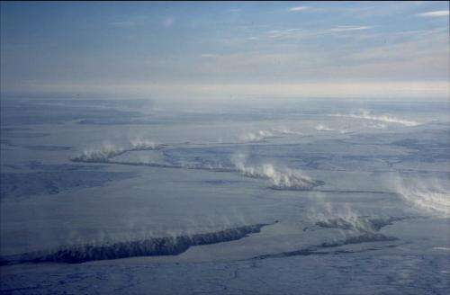 Mercury and ozone depletion events in the Arctic linked to sea-ice dynamics
