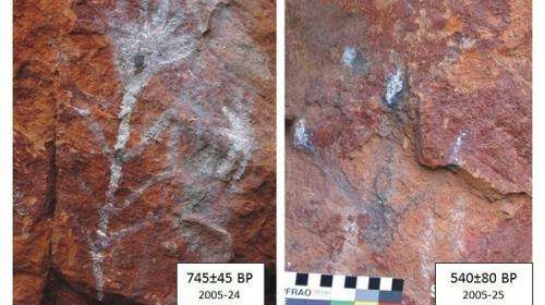 Micro-scale technique helps preserve rock art legacy