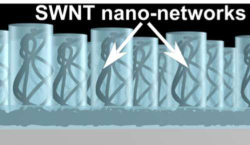 Nanotube composites increase the efficiency of next generation of solar cells