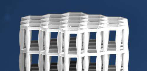 New bone-like material is lighter than water but as strong as steel