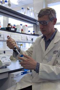 Next generation of bioplastics could be made from trees