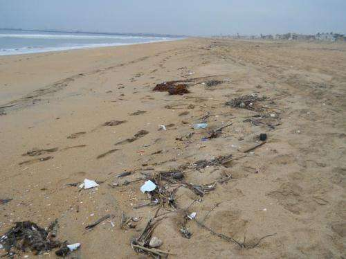 NOAA economic study shows marine debris costs California residents millions of dollars
