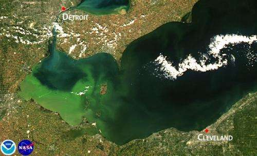NOAA, partners predict significant harmful algal bloom in western Lake Erie this summer