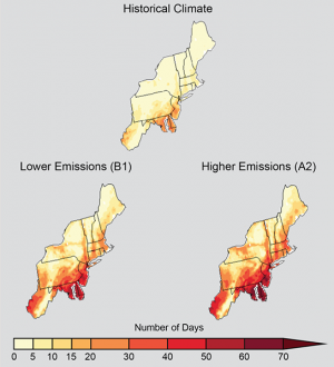 Northeast already hit by climate change, says draft of major U.S. report