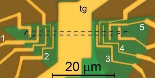 Optical microscope image