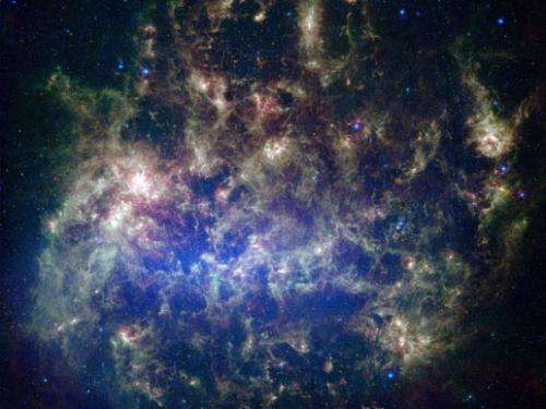 Organic conundrum in Large Magellanic Cloud