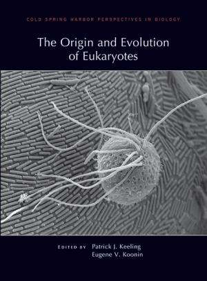 Origin of the Eukaryotic cell:  Part I - How to train your endosymbiont