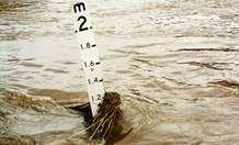 Peat bog restoration work holds back water