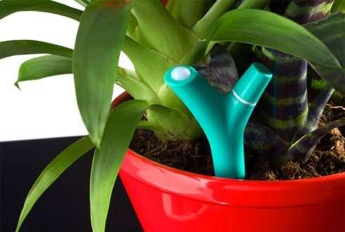 Plant asks for care via Flower Power plant sensor