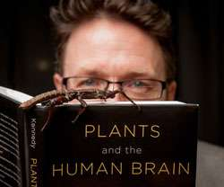 Plants and the human brain: Why humans think like insects
