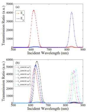 Plasmon-enhanced Polarization-selective filter