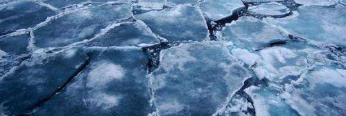 Poles apart: Arctic sea ice has shrunk but Antarctic sea ice has grown