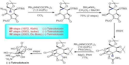 Privileged strategies for direct transformations of inert aliphatic carbon-hydrogen bonds