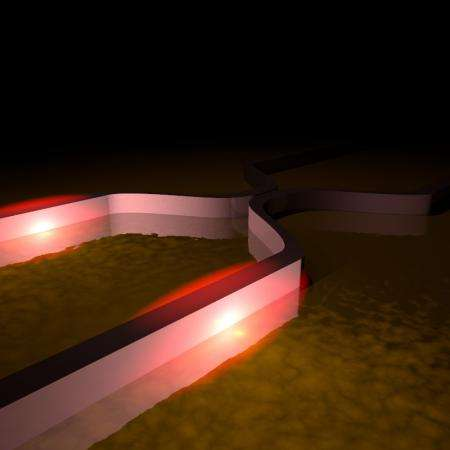 Quantum photon properties revealed in another particle -- the plasmon