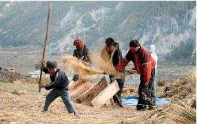 Regulating biodiversity in India and Nepal