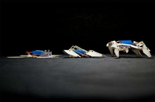 Robot folds itself up and walks away