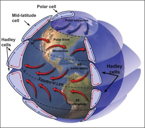 Rotation of planets influences habitability