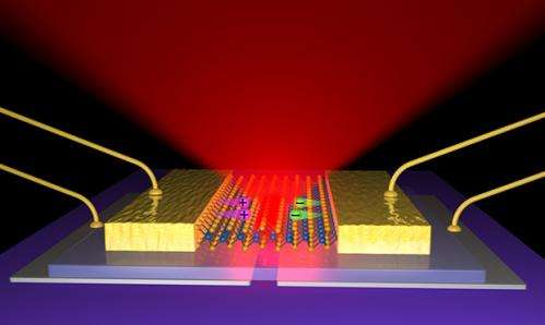 Scientists build thinnest-possible LEDs to be stronger, more energy efficient
