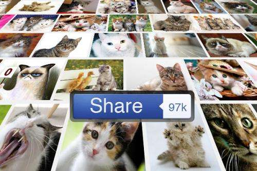 Scientists learn to predict which photos will go viral