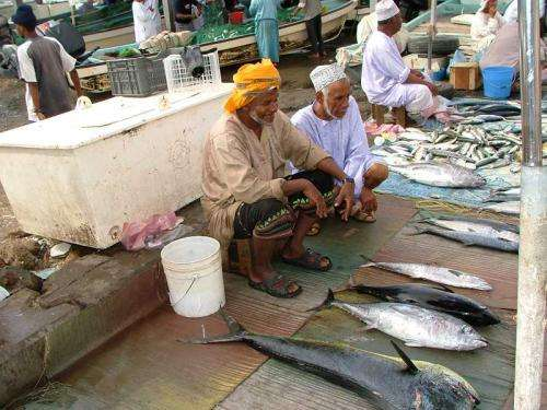 Shift in Arabia sea plankton may threaten fisheries