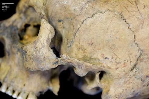 Skulls suggest Romans in London enjoyed human blood sports