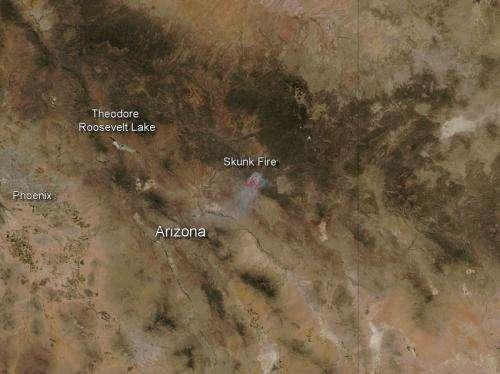 Skunk fire in Arizona