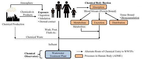 Sludge as new sentinel for human health risks