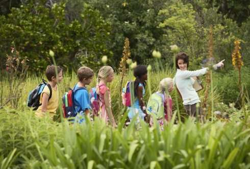 Sustainability needs link between theory and practice in education