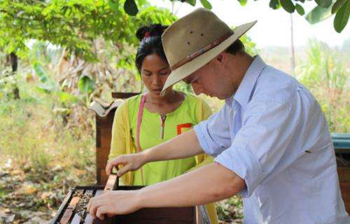 Sydney scientists introduce Plan Bee to South East Asia