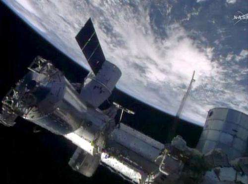 This April 20, 2014 image from NASA TV shows the SpaceX Dragon cargo craft berthed to the Earth-facing port of the International