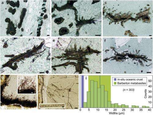 Titanite microtextures in Archean metavolcanic pillow lavas