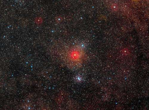 VLT spots largest yellow hypergiant star