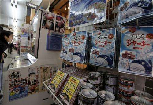 Will world court ruling end Japan's whaling? (Update)
