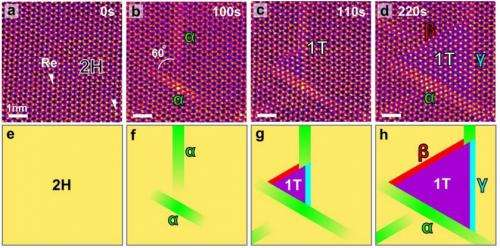 Researchers able to watch phase transition in 2D semiconductors using STEM