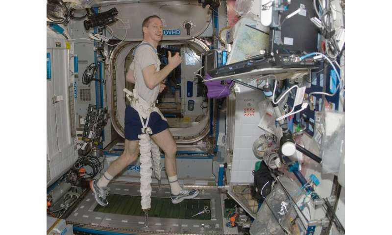 Five key findings from 15 years of the International Space Station