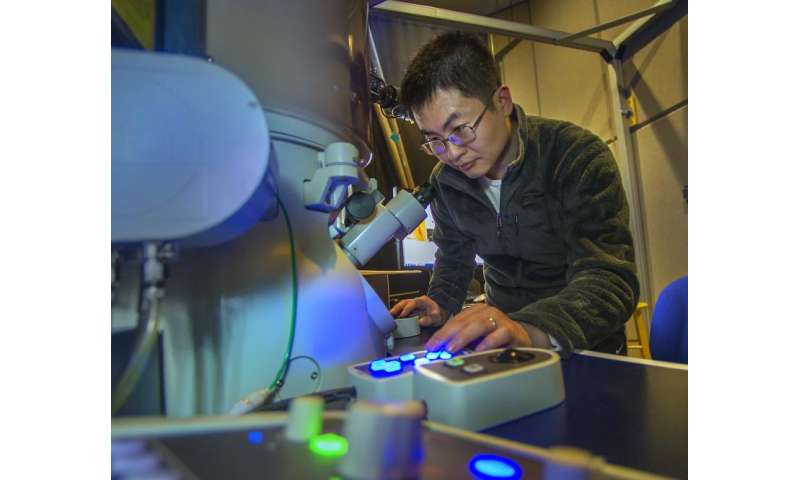 Long-sought magnetic mechanism observed in exotic hybrid materials
