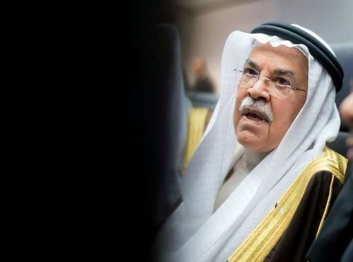 Saudi Oil Minister Ali al-Naimi said he favoured a shift from oil to natural gas, of which the kingdom also has vast stocks, and