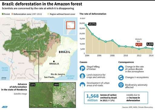 Graphic showing deforestation in the Amazon forest up to 2014
