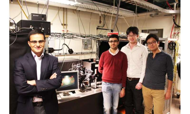 Coming to a monitor near you: A defect-free, molecule-thick film