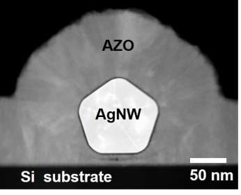 Transparent, electrically conductive network of encapsulated silver nanowires