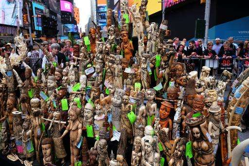 US crushes ton of ivory in New York's Times Square