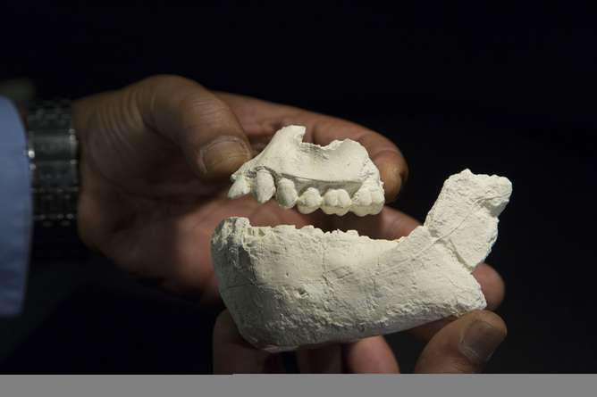 3 million-year-old forebear who lived alongside 'Lucy'