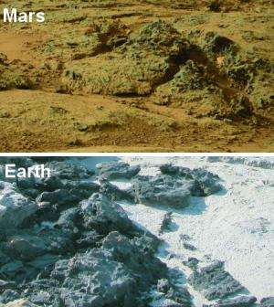 Potential signs of ancient life in Mars rover photos