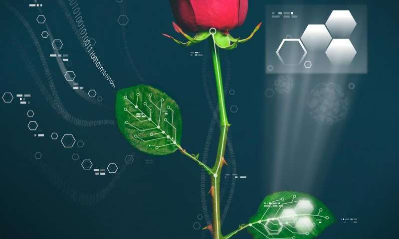 Electronic plants developed