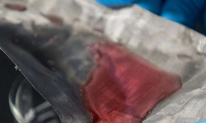Scientists develop mesh that captures oil--but lets water through