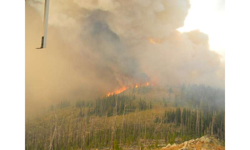 New research findings reveal how wildfires spread