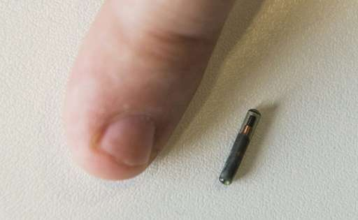 A Kaspersky employee places his thumb next to the grain-sized NFC (Near Field Communications) chip