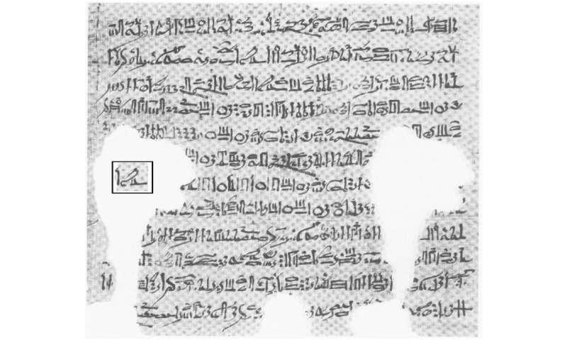 Ancient Egyptians described Algol's eclipses