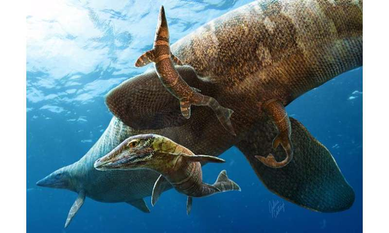 A new beginning for baby mosasaurs